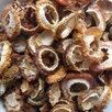 Айва японскская сушёная по цене 80₽ - Продукты, фото 1