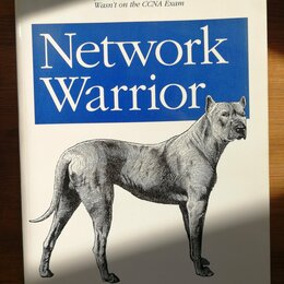 Компьютеры и интернет - Network Warrior, 0