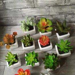 Искусственные растения - Кактусы, суккуленты искусственные, 0