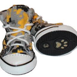 Одежда и обувь - Обувь для йорка, 0