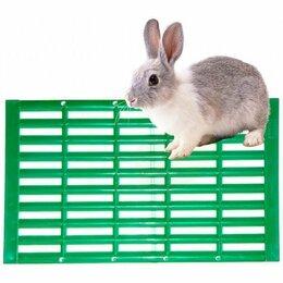 Кролики - Трап для кроликов - кролики, 0