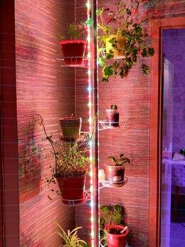 Аксессуары и средства для ухода за растениями - Разработка и изготовление светодиодных…, 0
