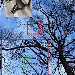 Прочие услуги - Снять квадрокоптер с дерева, 0