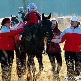 Конный спорт - Обучение верховой езде, иппотерапия., 0