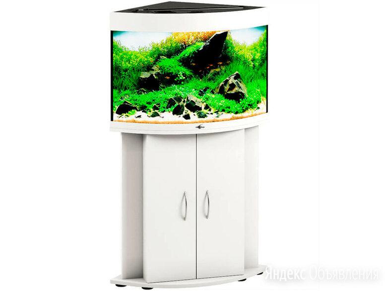 Угловой аквариум 90 л с тумбой Биодизайн Диарама 90 Белый по цене 20250₽ - Аквариумы, террариумы, тумбы, фото 0
