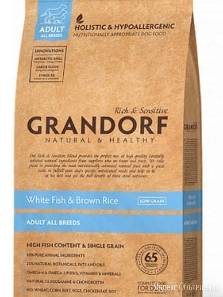 GRANDORF Сухой корм для взрослых собак всех пород 12 кг с рыбой  по цене 5200₽ - Корма , фото 0