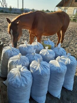 Удобрения - Конский навоз в мешках по 60 литров, 0