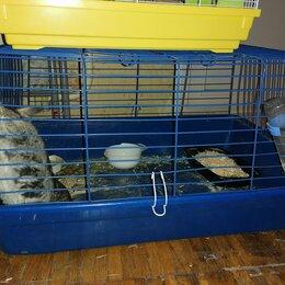 Клетки, вольеры, будки  - Клетка для кролика, 0