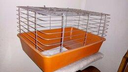 Клетки и домики  - Новая клетка для морской свинки., 0