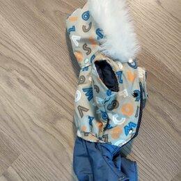 Одежда и обувь - Комбинезон для маленькой собаки (девочка), 0