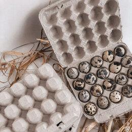 Ёмкости для хранения - Упаковка для яиц (перепелиных), 0