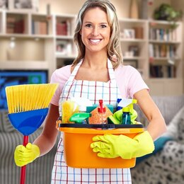 Бытовые услуги - Вакансия домработница, 0