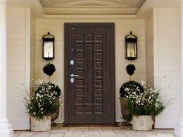 Входные двери - Дверь порта S51 зеркало, 0