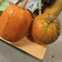 Продукты - Овощи с экопоселений, за кг, 0