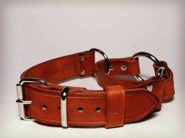 Ошейники  - Ошейник удавка для собак, ширина 3 см, 0
