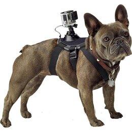 Аксессуары для экшн-камер - Крепление-упряжка для собак для экшен-камер, 0