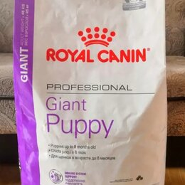 Корма  - Giant Puppy 17 кг royal canin , 0