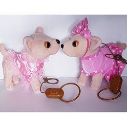 Мягкие игрушки - Собачка Чичилав, 0