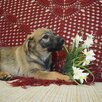 Ласковая, трепетная, Любвеобильная, Щенуля , ищет Добрую Семью по цене даром - Собаки, фото 4