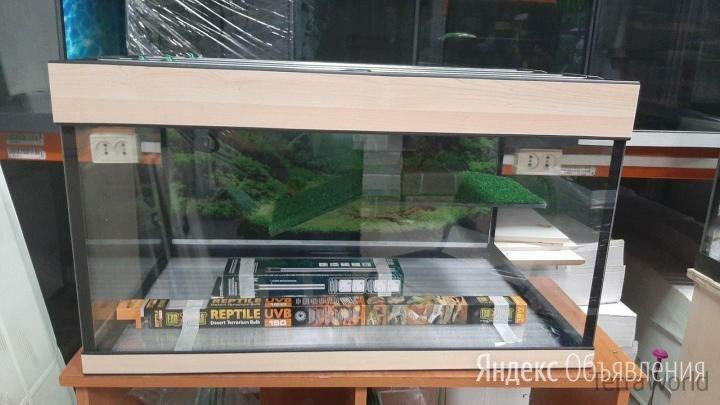 Террариум 200 литров для красноухой черепахи по цене 9470₽ - Аквариумы, террариумы, тумбы, фото 0