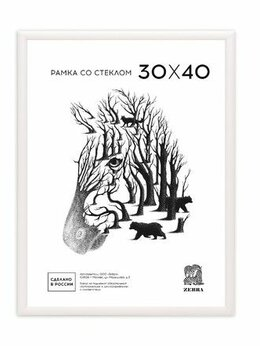 Фоторамки - Рамка 30*40 пластик белая Zebra арт. 500 /15, 0