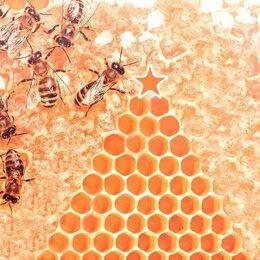 Сельскохозяйственные животные и птицы - Пчелопакеты 2022 Спб и ЛО, 0