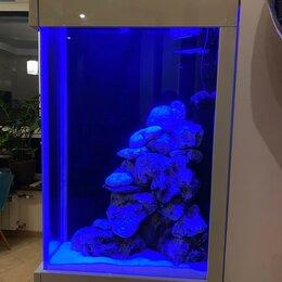 Аквариумы, террариумы, тумбы - Морской аквариум, 0