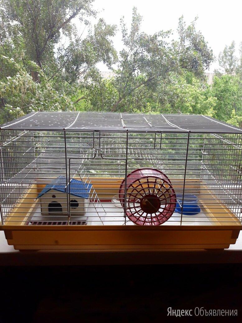 клетка для грызунов по цене 2550₽ - Лежаки, домики, спальные места, фото 0