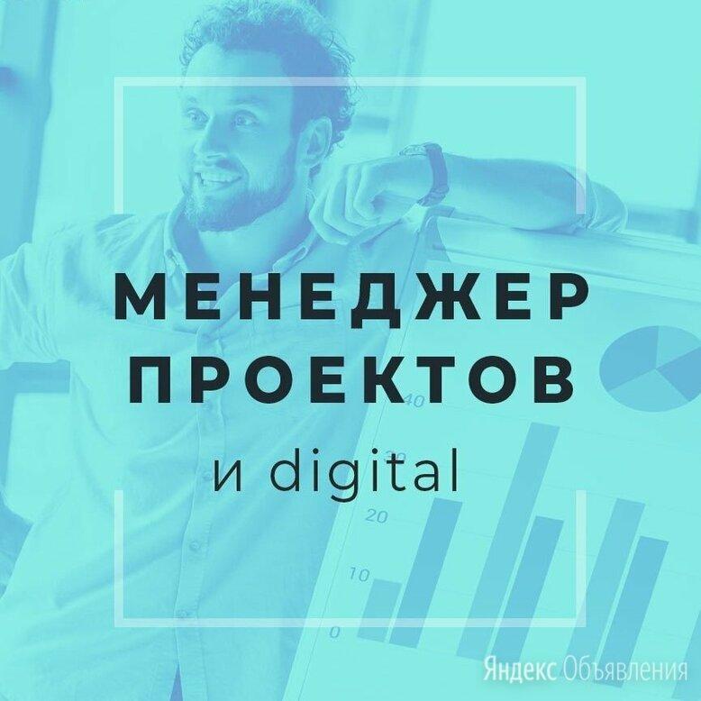 Менеджер проектов - Менеджеры, фото 0