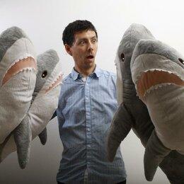 Аквариумные рыбки - Акула, 0
