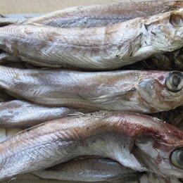 Продукты - Рыба вяленая копчёная свежемороженая солёная Нижний Новгород, 0
