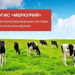 Готовые проекты, методики, технологии - ГИС Меркурий ветеринарные документы, 0