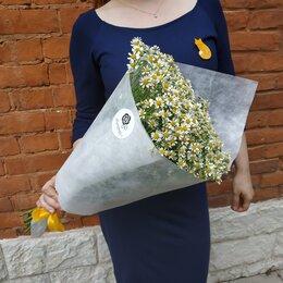 Цветы, букеты, композиции - Букет ромашек, 0