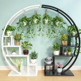 Комнатные растения - Комнатные растения Челябинск 350, 0