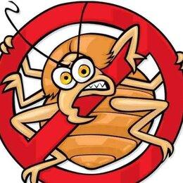 Средства от насекомых - Уничтожение клопов, тараканов и др насекомых, 0