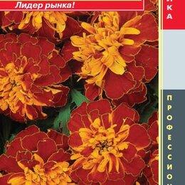Семена - Бархатцы отклоненные (серия Bonanza) Бонанза Гармония ПЛ, 0