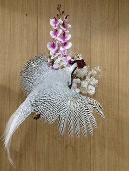 Рога, шкуры, чучела животных - Чучела декоративных фазанов различных пород., 0