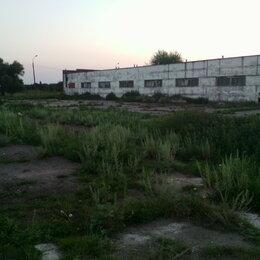 Сельское хозяйство - Продам ферму,землю 40га,дом 4комнатный., 0