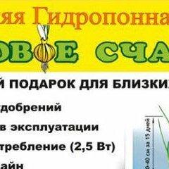 Аксессуары и средства для ухода за растениями - Чудо грядка гидропонная Луковое Счастье выращиватель зелёного лука, 0