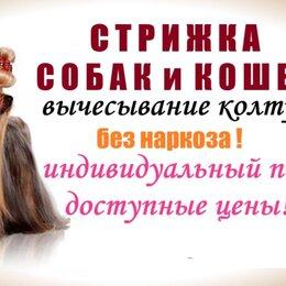 Услуги для животных - стрижка собак, 0