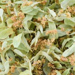 Ингредиенты для приготовления напитков - Липовый Цвет и другие Полезные Травы, 0