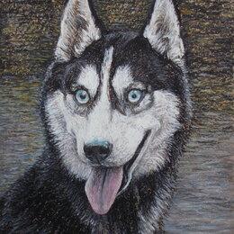 Картины, постеры, гобелены, панно - Хаски.Собака,картина,портрет, 0