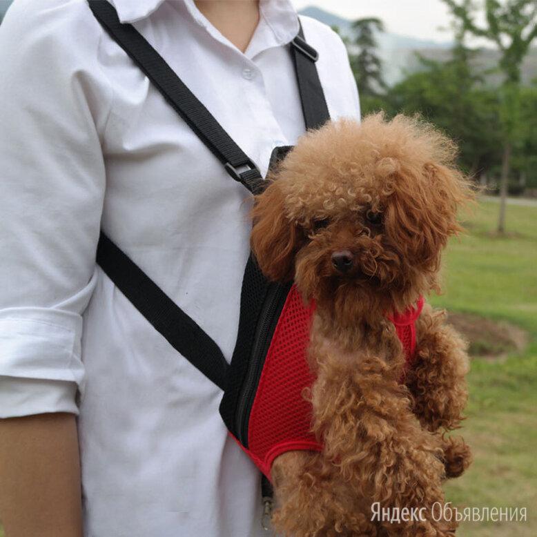 """Рюкзаки """"Кенгуру"""" для собак и кошек от 2,5 до 10 кг по цене 1550₽ - Транспортировка, переноски, фото 0"""