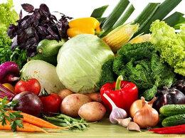 Семена - Купить семена Капусты, Моркови, Лука, Зелени.…, 0