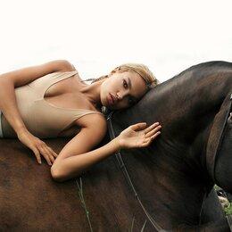 Сертификаты, курсы, мастер-классы - Фотосессии с лошадьми в Санкт-Петербурге, 0