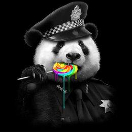 Раскраски и роспись - Картины по номерам Paintboy Панда полицейский, 0