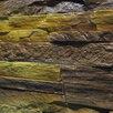Сланец Адыгейский по цене 500₽ - Облицовочный камень, фото 6