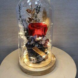 Цветы, букеты, композиции - Живая Роза в колбе с подсветкой, 0