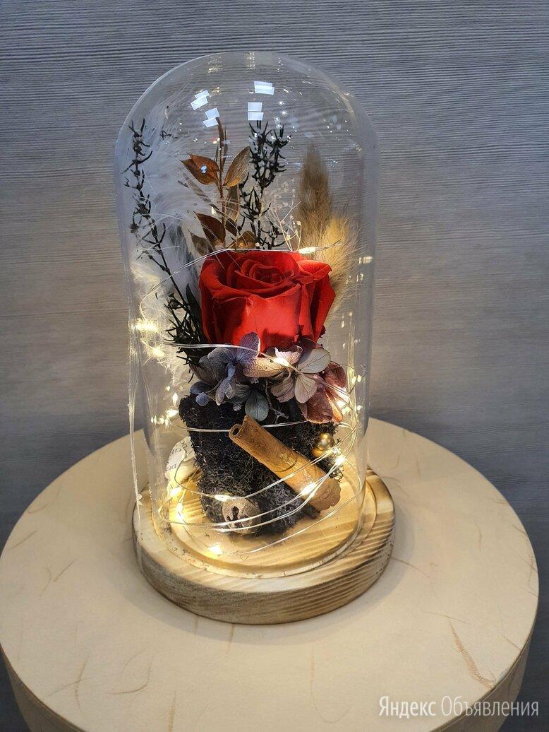 Живая Роза в колбе с подсветкой по цене 1300₽ - Цветы, букеты, композиции, фото 0