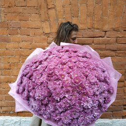 Цветы, букеты, композиции - Красивый букет из кустовых хризантем, 0